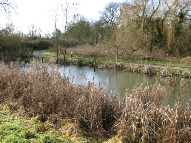 Pond near Elmstone church