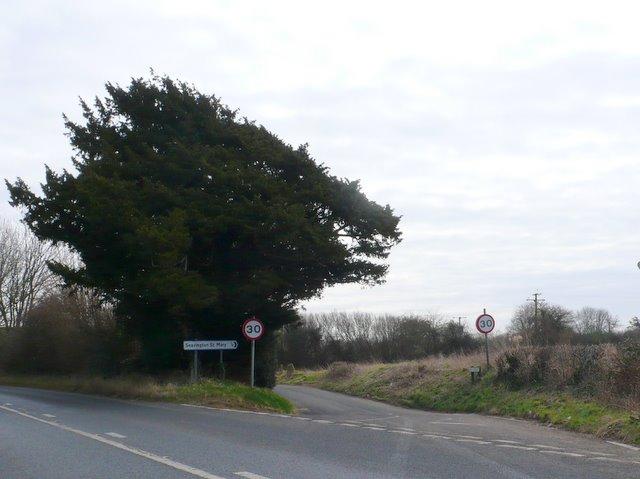 Road to Seavington St Mary