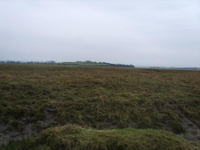 Lades Marsh