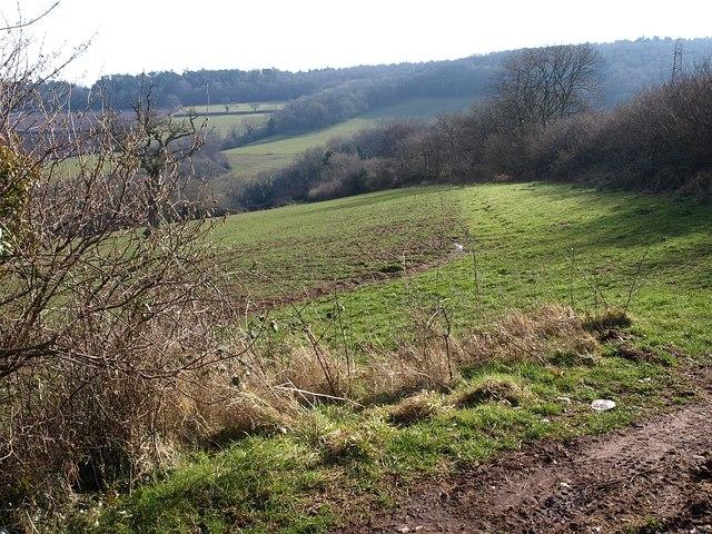 Field near Colley End Cross