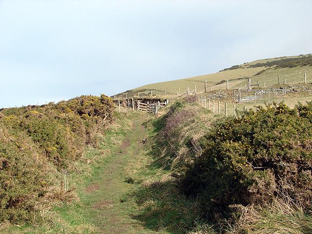 Gate on the Ceredigion Coastal Path