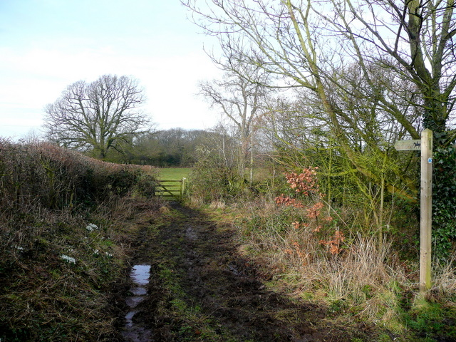 Bridleway to Martin Hussingtree