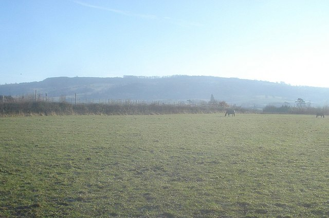 Pasture land south of Eckington