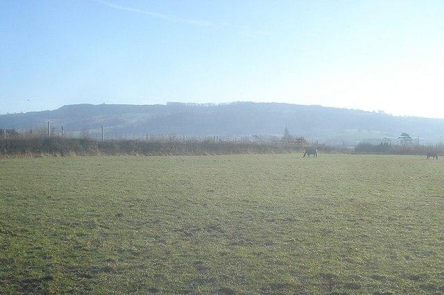 Pasture land south of Eckington