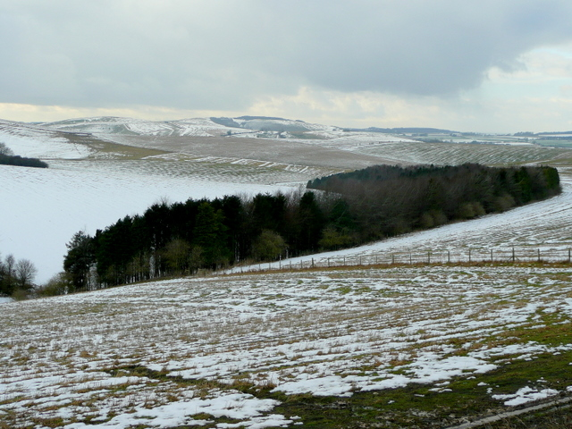 Wiltshire Downland 2