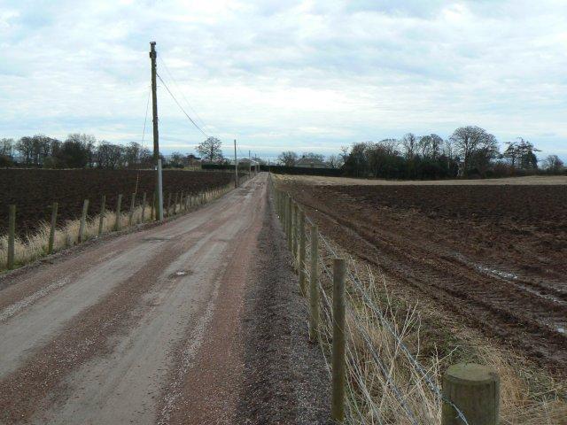 Strathairlie road