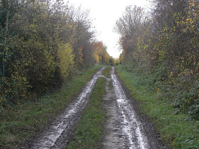 Bridleway towards Mapperley
