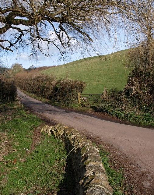 Lane to Mamhead