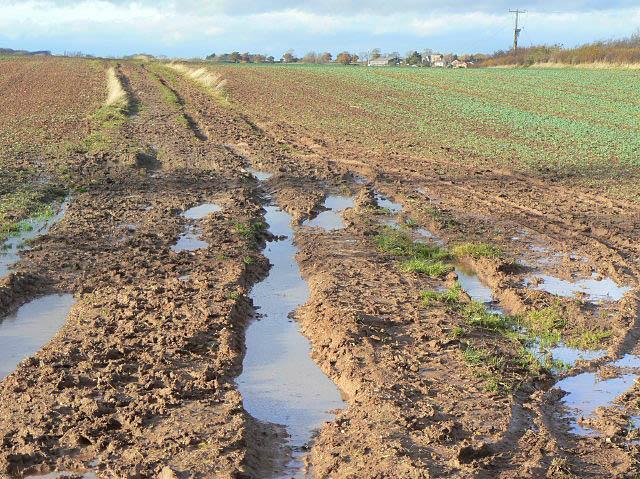 Muddy progress