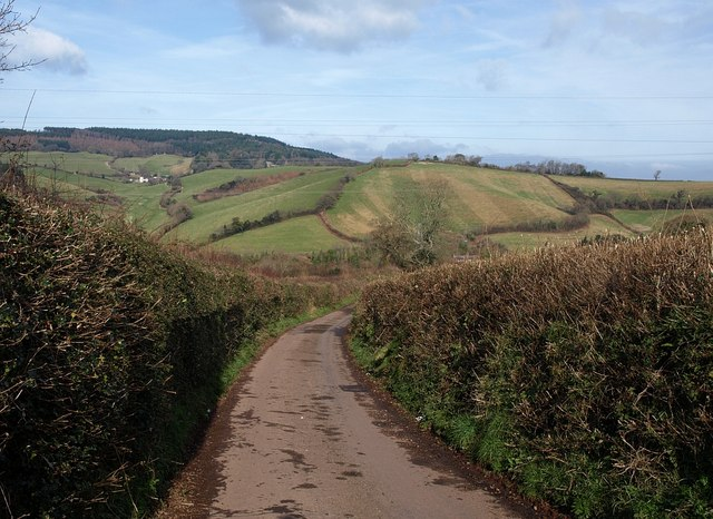 Lane above Dawlish Water valley