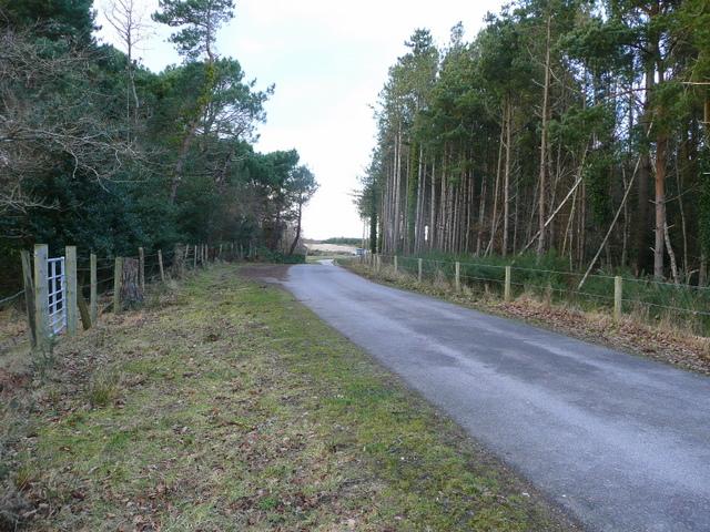 Farm road on Holme Heath