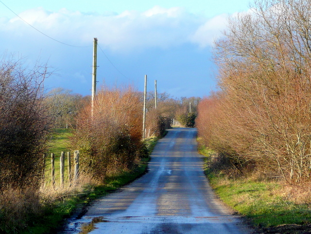 Farm road south of East Holme
