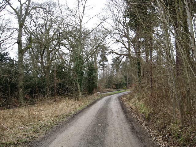 Woodlands track