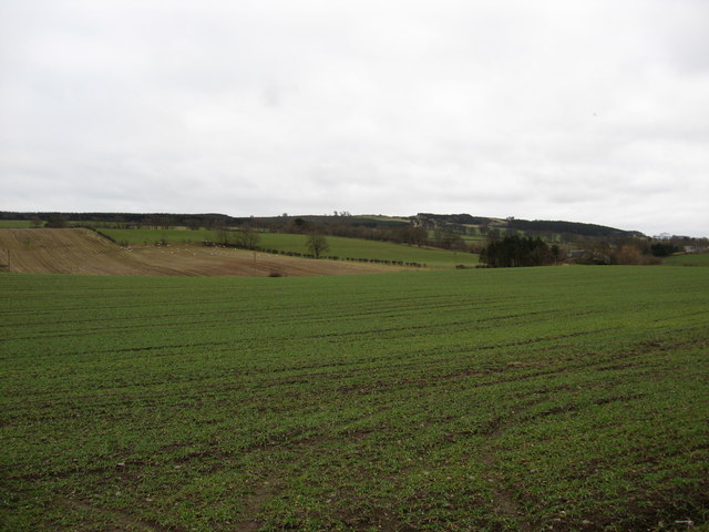 Farmland near Lantonhall