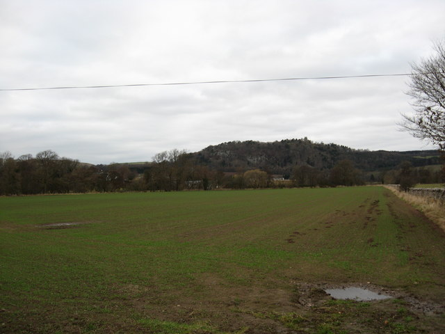 Freshly planted field in the Borders