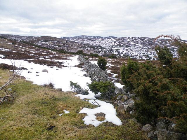 Old Workfare Wall Crossing Moorland towards Allt na Fèithe Sheilich