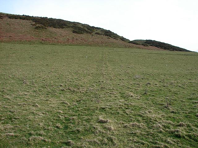 Pasture north of Wallog