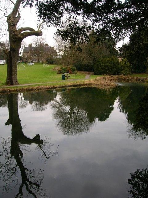 The Hayes Lake