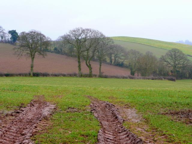 Herefordshire /Gloucestershire borderlands