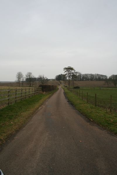 Road to Swan's Way