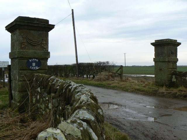 Carved gateposts