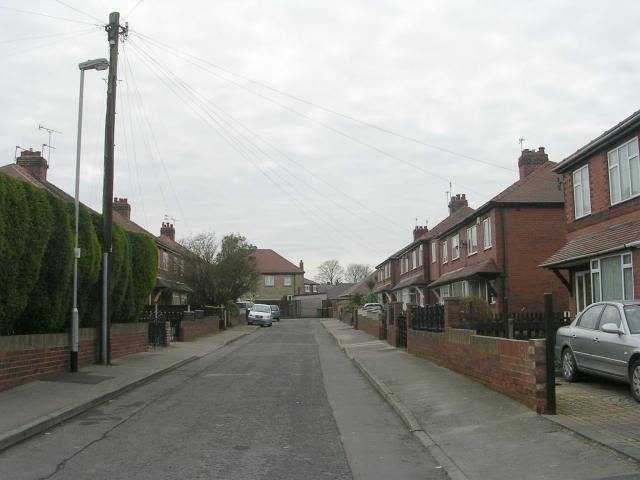 Wolsey Avenue - Lime Tree Avenue