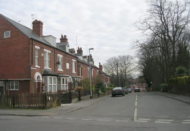 Beechwood Avenue - Love Lane