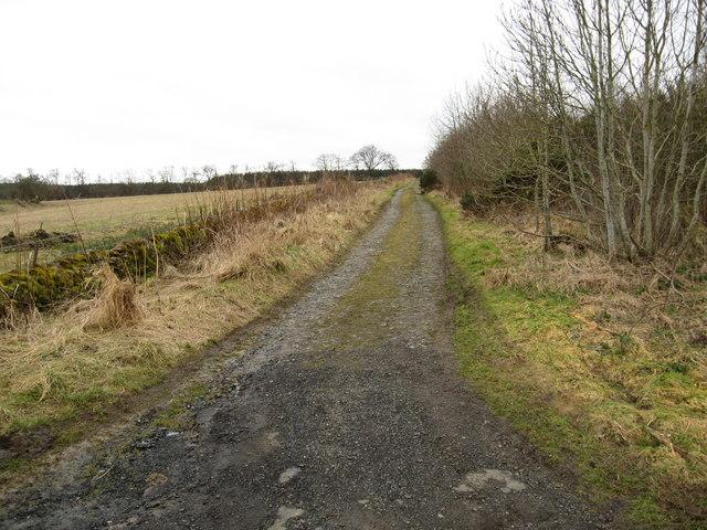 Farm track near Jedburgh