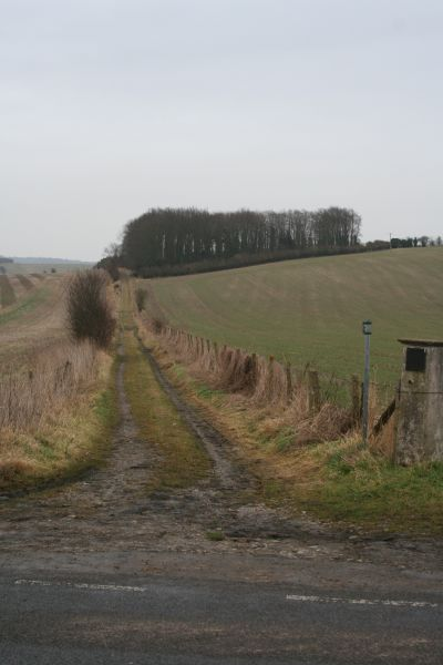 Bridleway to White hill