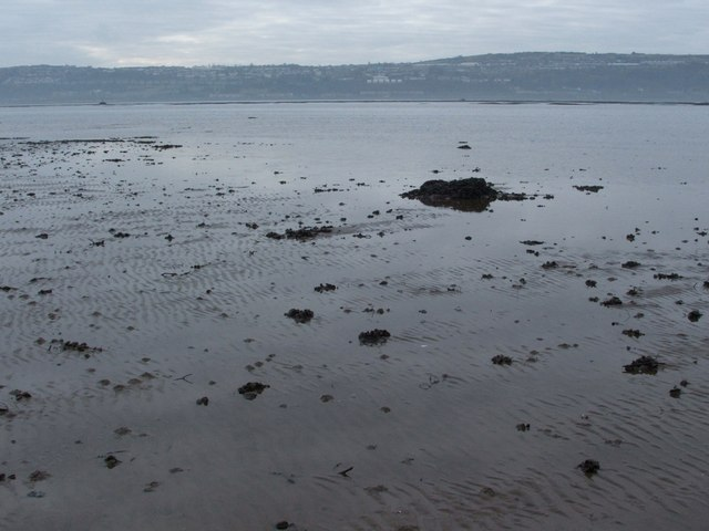 Shore near Cardross