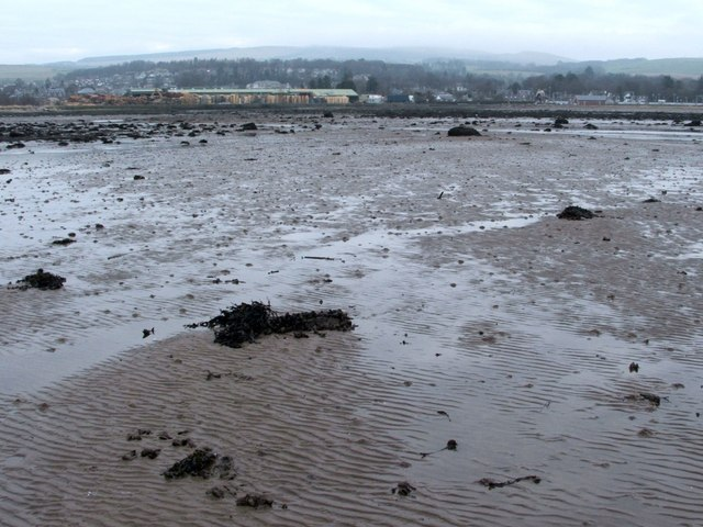 Shore near Cardross