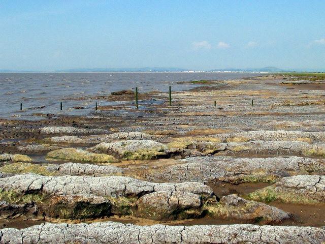 Mudflats, Bridgwater Bay