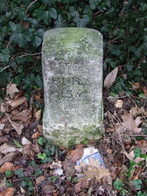To Bury 15