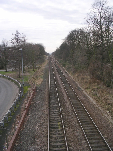 View from Bridge - Park Road