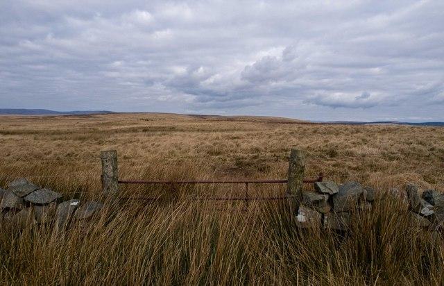 Moorland north of Kilfeddar
