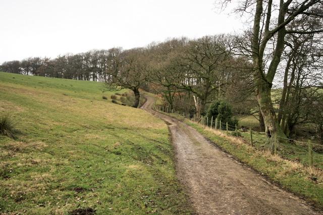 Footpath by Long Crossey Wood