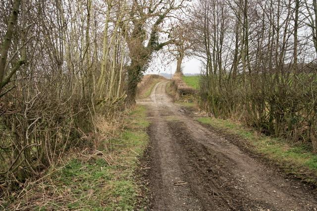 Lingart Lane
