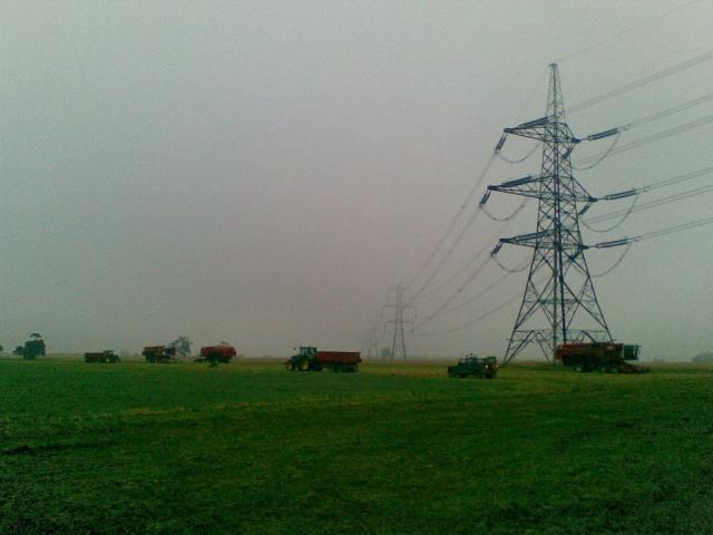 Giants in fog