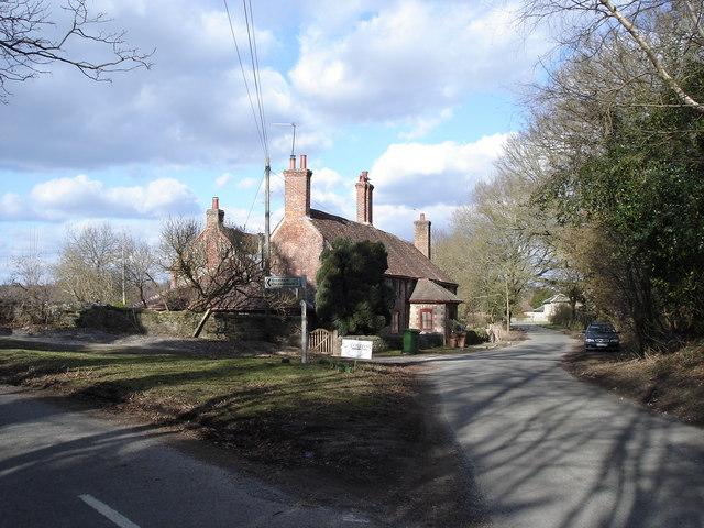 Lane north of Rackham - near the entrance to Parham House