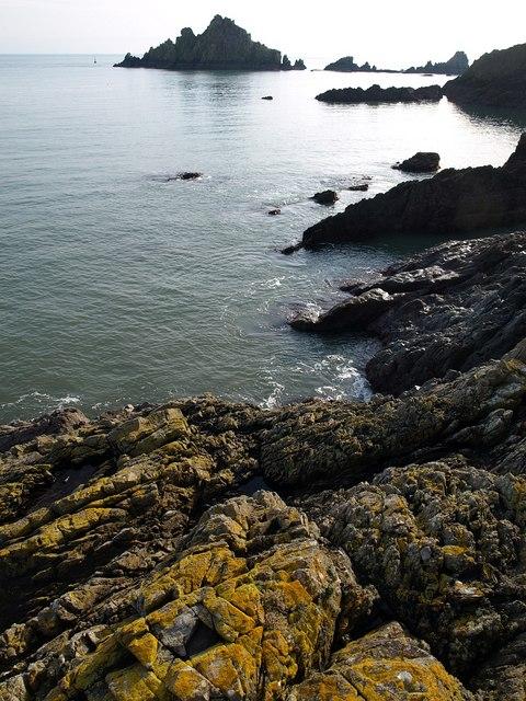 Coast south of Kelly's Cove
