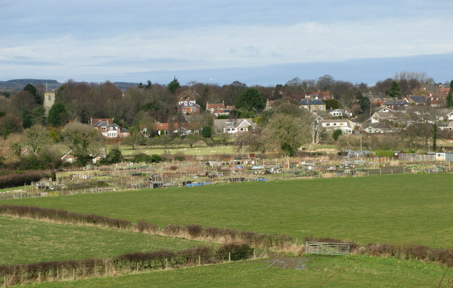 Allotment Gardens at Newby