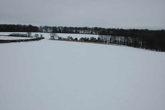 Cotswold snowscene