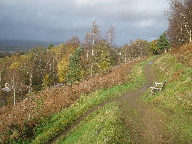 Autumn colours below Pinnacle Hill