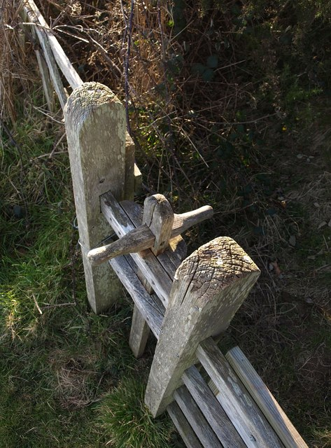 Dog gate beside stile near Coleton Fishacre