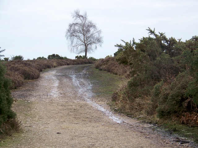 Track to Alderhill Inclosure