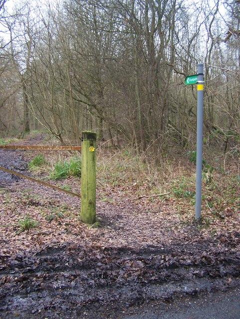 Footpath on Hospital Road, near Harpswood