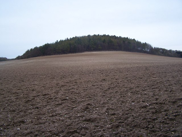 Mile Hill
