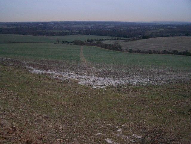 Footpath in field