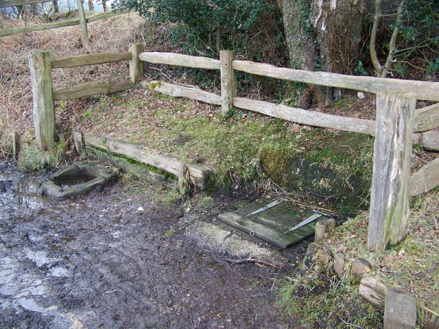 Abbots Well, Frogham