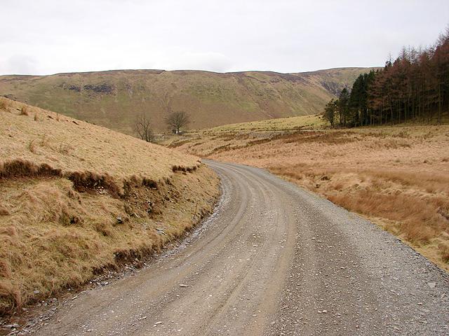 Track at Sweet Lamb